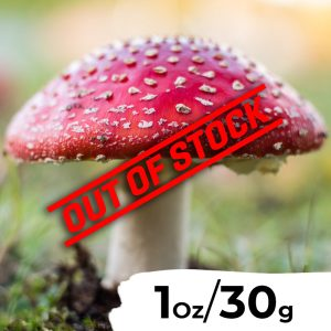 1 Ounce (30 grams) - Dried Amanita Muscaria (Fly Agaric)