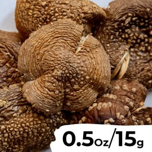 0.5 Ounce (15 grams) - Dried Amanita Pantherina (Fly Agaric) Caps