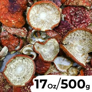 17.7 Ounces (500 grams) - Dried Amanita Muscaria (Fly Agaric) Caps