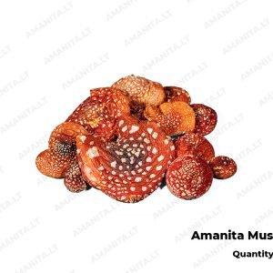 Dried Amanita Muscaria Hats